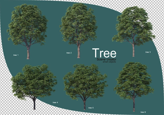 Variety of trees in 3d rendering Premium Psd