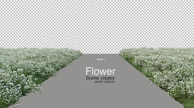 다양한 색상의 꽃들