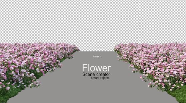 さまざまな色の花