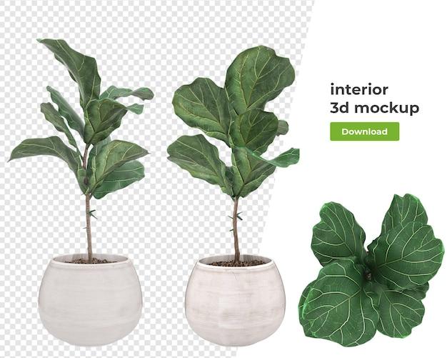 냄비 3d 렌더링에 다양 한 장식 식물