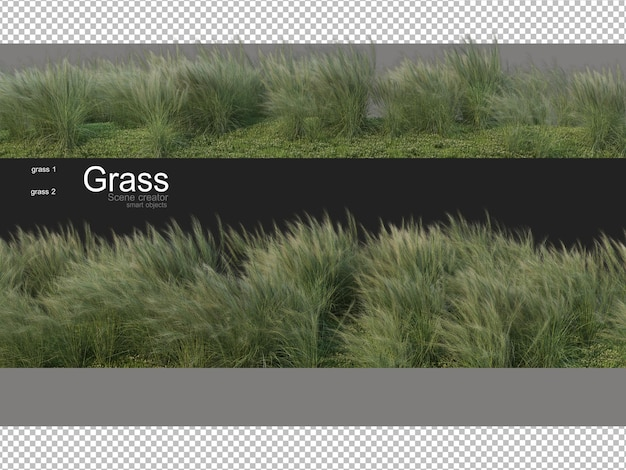 Various forms of grass rendering
