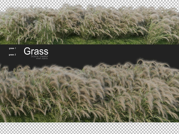 Various forms of grass rendering Premium Psd