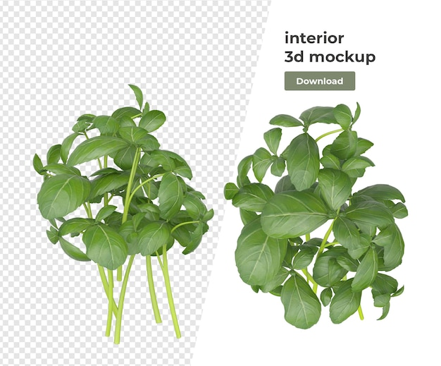 分離された様々な植物装飾3dレンダリング