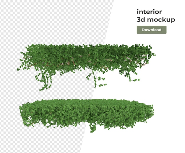 Различные растения украшения 3d-рендеринга изолированные