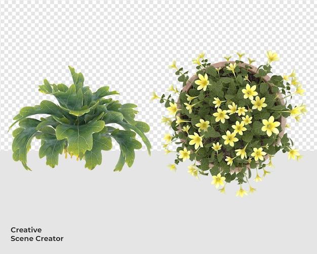 Различные растения в дизайне горшков Premium Psd