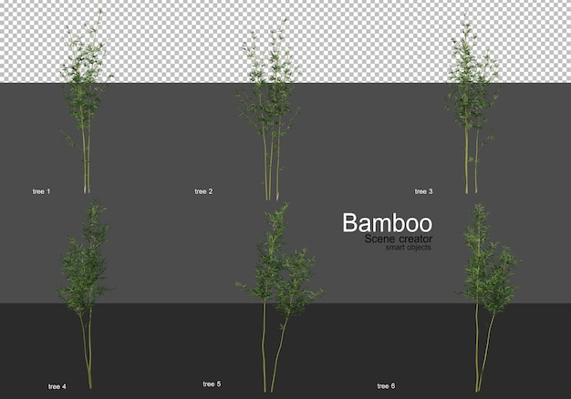 Various shapes of bamboo rendering