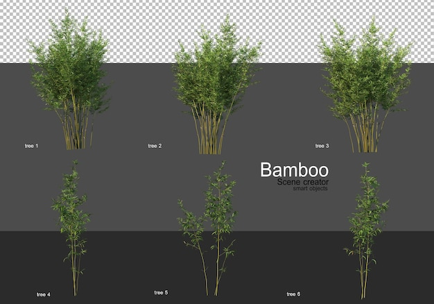 さまざまな形の竹のレンダリング