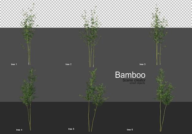 さまざまな形の竹のレンダリング Premium Psd