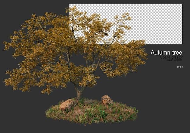 가을철 다양한 나무와 풀