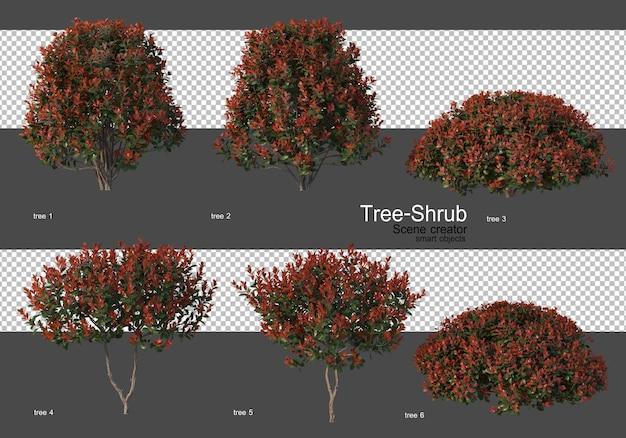다양한 나무와 관목 프리미엄 PSD 파일
