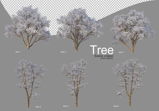아름다운 꽃이 만발한 다양한 나무