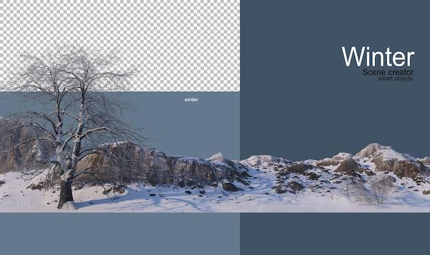 冬の様々な木