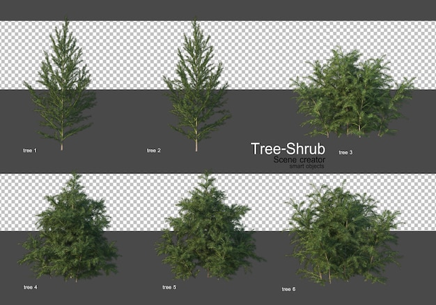 Various trees and shrubs