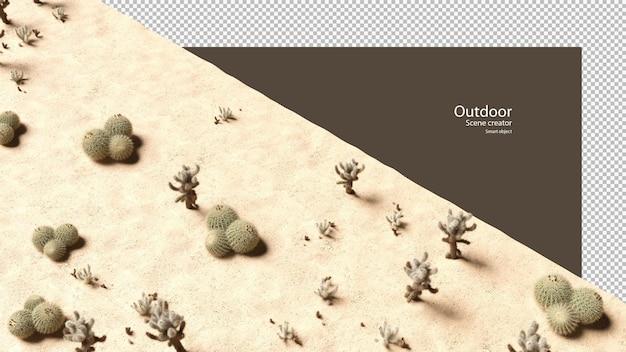 砂利と砂の上のさまざまな種類のサボテン