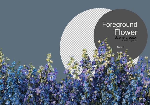 Различные виды цветов, снятые камерой крупным планом