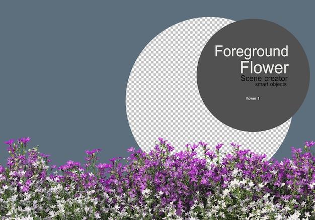 근접 촬영 카메라로 찍은 다양한 종류의 꽃