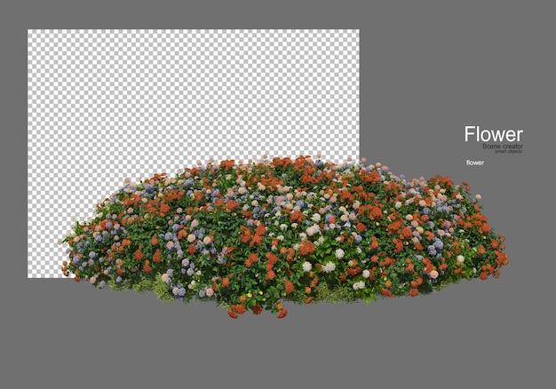 다양한 종류의 꽃