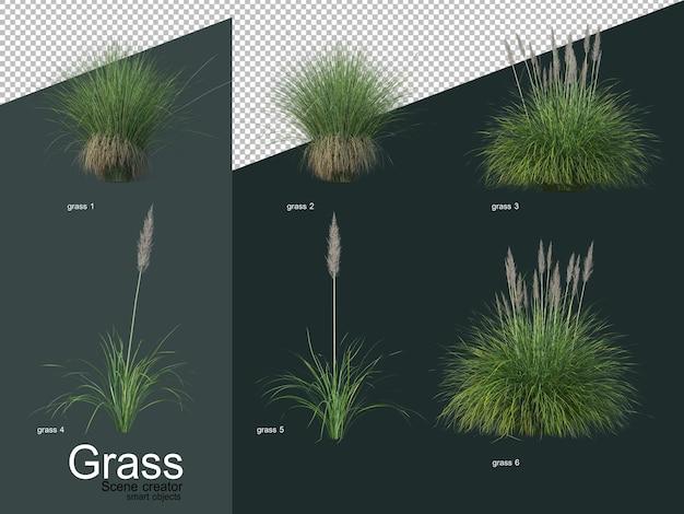 さまざまな種類の草の3dレンダリング