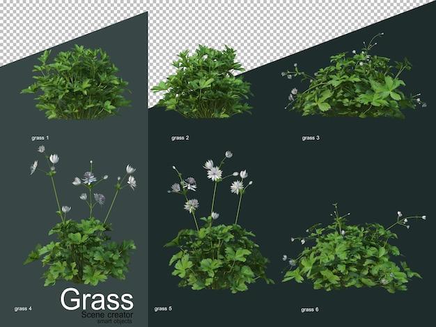다양한 유형의 잔디 3d 렌더링