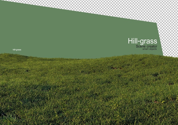 다양 한 유형의 잔디 렌더링 격리 됨