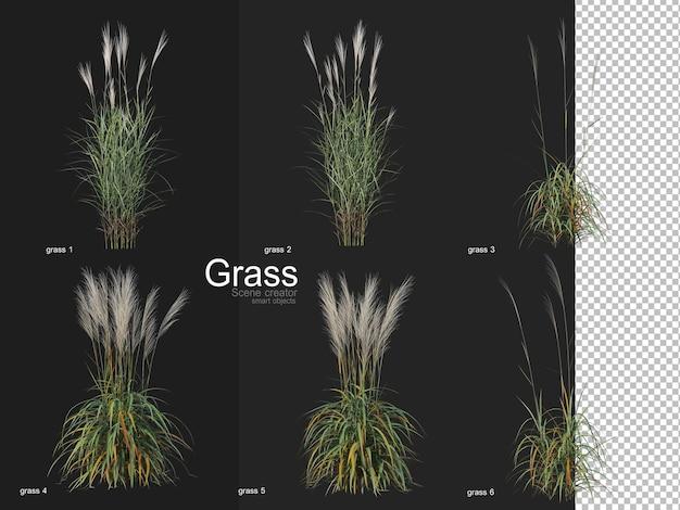 さまざまな種類の草のレンダリング