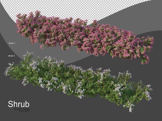 さまざまな種類の低木
