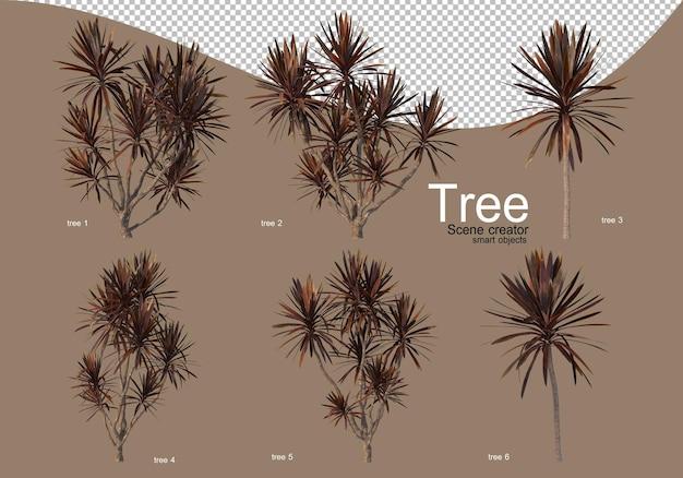 아름다운 조경을 위한 다양한 종류의 나무들