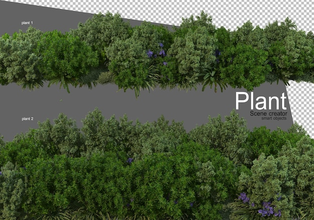 Various types of shrubs rendering isolated