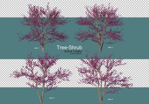 다양한 종류의 나무와 관목