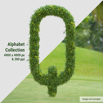 Vertical alphabet of garden tree and green leaves, letter q