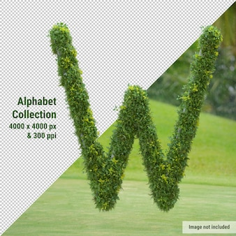 Vertical alphabet of garden tree and green leaves, letter w