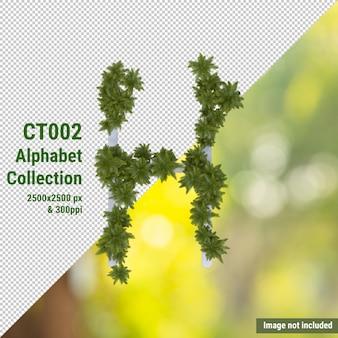 Вертикальный алфавит из кокосового дерева и зеленых, белых листьев