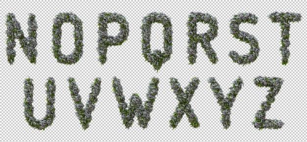 Вертикальный алфавит из садового дерева и зеленых листьев, буква nz