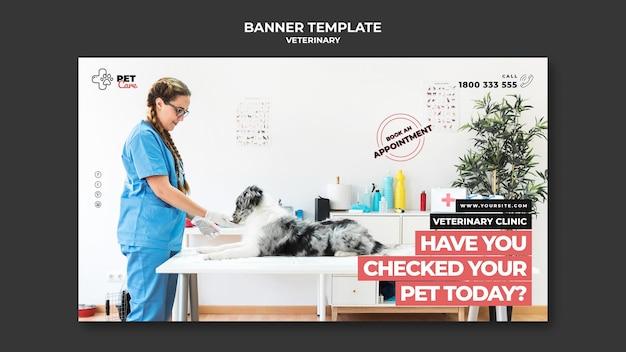 Modello di banner veterinario