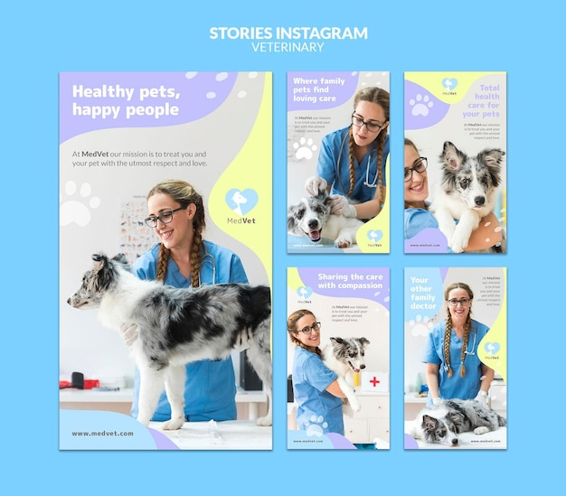 Veterinary clinic instagram stories template
