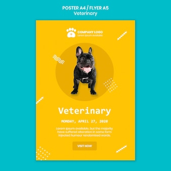 Veterinary square flyer template concept
