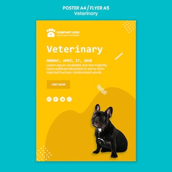 Veterinary square flyer template