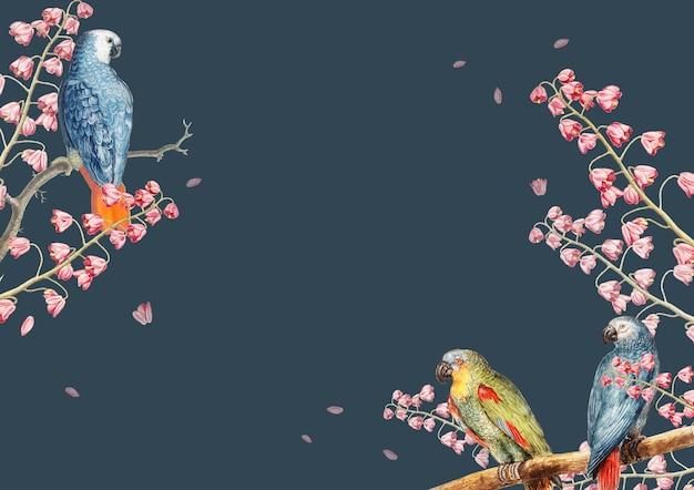 Винтажные попугаи и концепция природы границы