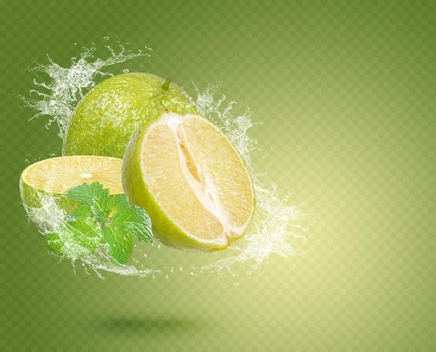 Water splash on fresh lemon with mint isolated