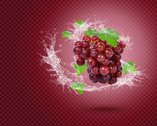 Water splash on fresh red graperoselle with leaves isolated