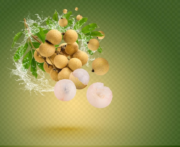Water splash on longan with leaf isolated on green background. premium psd