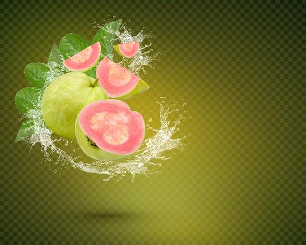 緑の背景に分離された葉を持つ新鮮なグアバの果実に水しぶき。プレミアムpsd