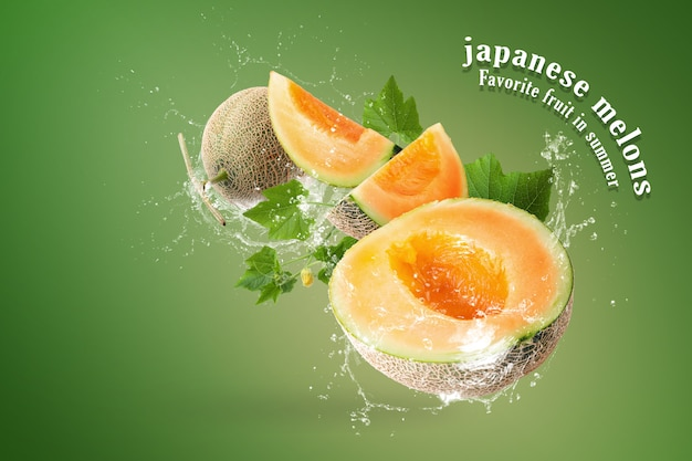 Water splashing on sliced of japanese melons on green background