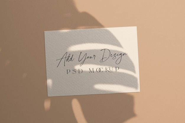 White card mockup shadow overlay monstera leaves