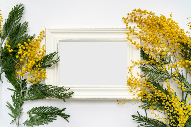 White vintage frame with flowers of mimosa on white background, mockup