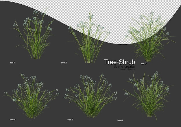 다양한 나무와 관목 렌더링