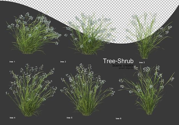 다양한 나무와 관목 렌더링 프리미엄 PSD 파일