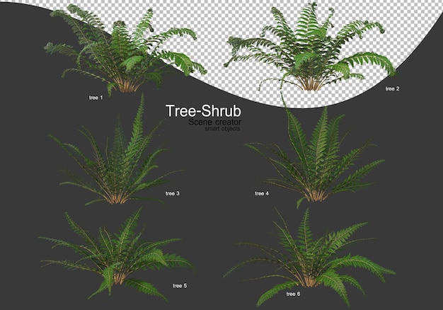Wide variety of trees and shrubs rendering