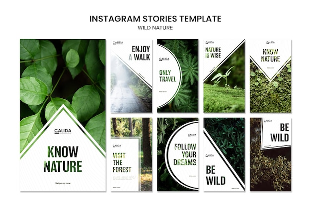 Wild nature square instagram stories template