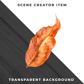 Wood leaf transparent psd
